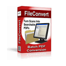 FileConvert Professional 10.2.0.34 Crack + License Key (Latest) Download